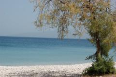 strand aan de caming